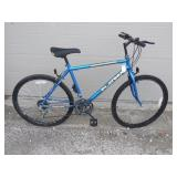 Roadmaster Platinum Bike
