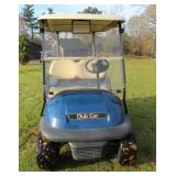 Complete Fleet of Radrick Farms U of M golf carts
