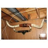 Longhorn/ Steer horn mounts