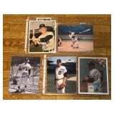 #604 Lot of 5 Signed Tiger 8x10