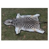 Full body Zebra pelt rug