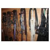 Horse related bridles, halters