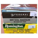 Remington & Winchester 300 Mag 180 Grain Ammo