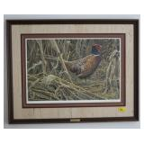 STRUTTING RING-NECKED PHEASANT BY ROBERT BATEMAN