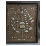 American Indian antique arrowheads & blades