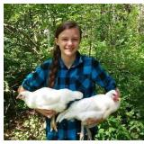 Katie Sheldon  (Poultry Project)