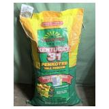Kentucky 31 penkoted tall fescue grass seed