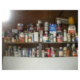 Paint Lot, Contents of 2 Shelves