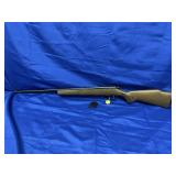 Glenfield Mod 20 .22 S-L-LR Rifle