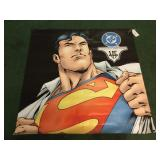 DC Comic Superman Vinyl Poster