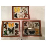 Set of 3 Butterfly displays (a)