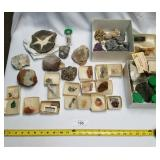 Large Lot of Collectible Rocks & Minerals