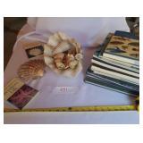 Large Lots of Seashells & Sealife/Wildlife Books