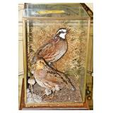 #16 Pair Preserved Game Birds