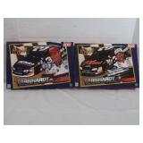Dale Earnhardt Jr Collectible 200 Piece Puzzle