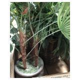 Box of silk plants