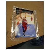 Blake Griffin 11 x 14 autographed