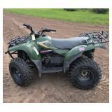 Kawasaki Prairie 300 Automatic ATV