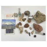 Fossilized Sharks Tooth, Mt. Saint Helens Ashes+