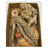 Wood Burl, Cactus Skeleton, Wood Turned Bowl