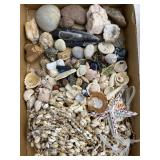 Shells, Rocks, Natural Necklaces