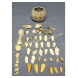 Assorted small seashells and baskets