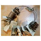 Ring of Master Lock Keys