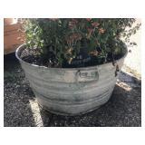 24 inch wash tub planter