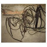 Horse Bridle and Bit Lot