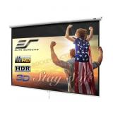 """100"""" Manual Pull Down Projector Screen"""