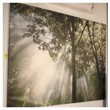 Stretch Canvas Print of Trees and Sun Rays