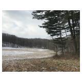 99 Acre Land Auction