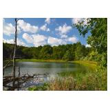143 ACRE PERRY COUNTY AUCTION