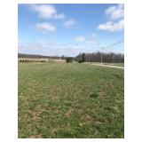 Wayne County Land Auction