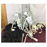 LED Skeleton Dog, Assorted Skeletons