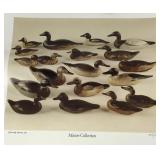 Signed Waterfowl Decoys Art - Print