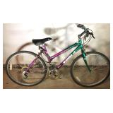 Glacier Point Magna 6 Speed Mountain Bicycle