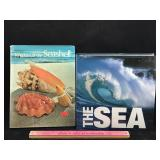 2 Hardcover Books about Seashells & The Sea