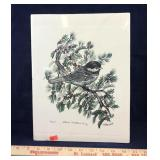 Bird in Tree Winter Print
