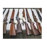 Lots of long guns