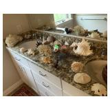 VERY LARGE LOT OF SEA SHELLS CORAL AND MORE