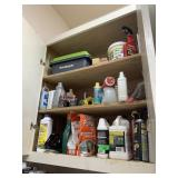 CABINET FULL OF MISC CHEMICALS / GARAGE ITEMS