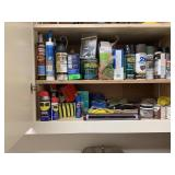 CONTENTS OF CABINET / CHEMICALS MORE