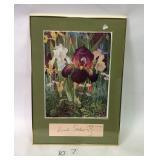 4 Pictures, incl Robert Von Liski Bird Litho