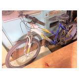 Fuji 19 inch mountain bike