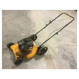 Briggs and Stratton Poulan Pro lawn mower