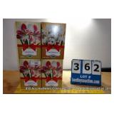 AMARYLLIS CLOWN FLOWER BULB KIT (4X MONEY)