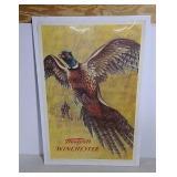 Western-Winchester 1955 pheasant dealer poster