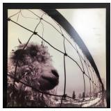 """Pearl Jam """"Vs."""" LP, Vinyl, Alternative Cover, 1993"""