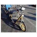 3 WHEELER ELECTRIC MOTORCYCLE